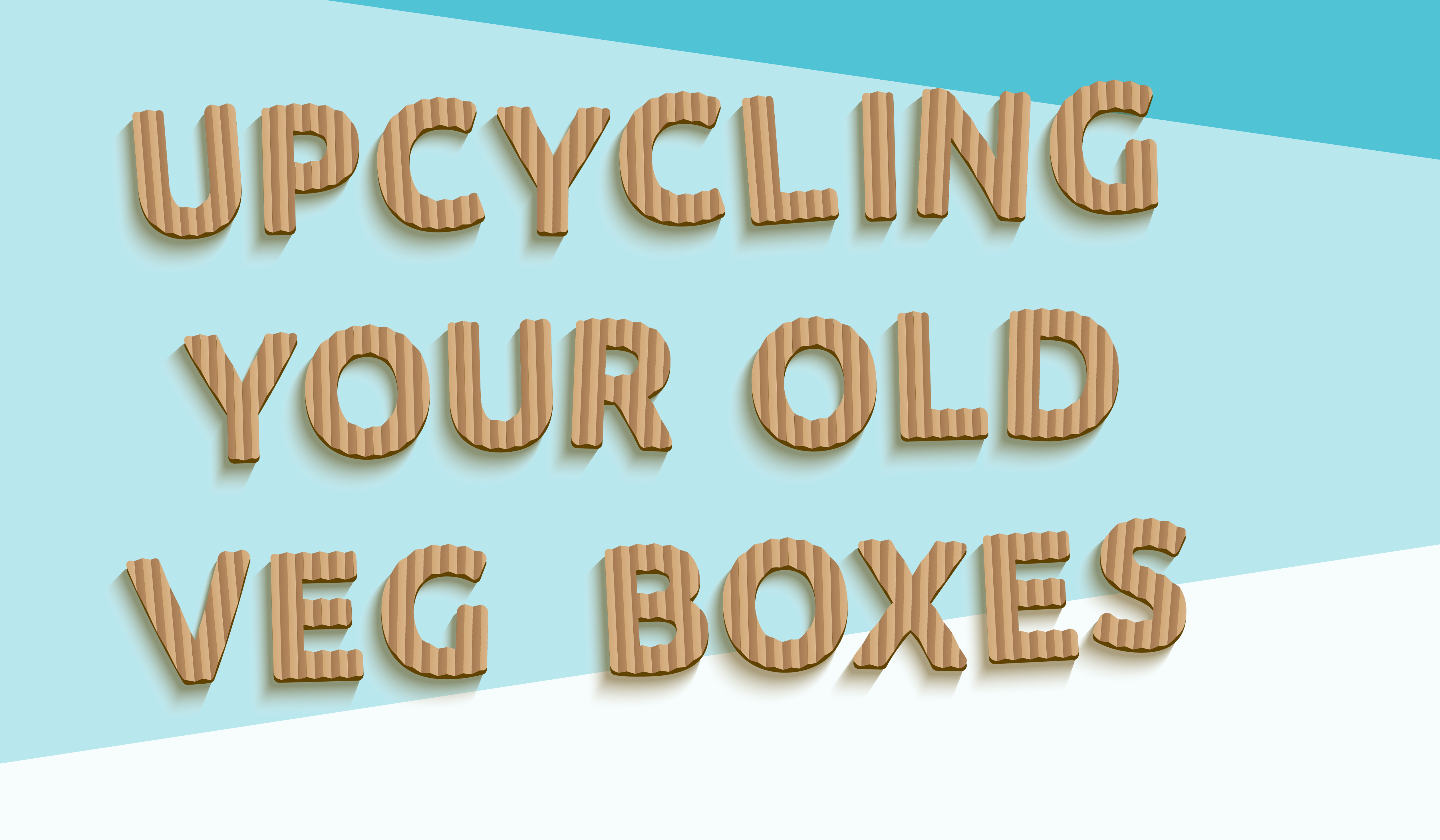 Upcycling your old veg boxes